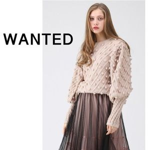 ISO: Chicwish Ingenuous Pom Pom Sweater
